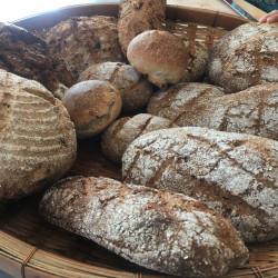 天然酵母パン教室案内