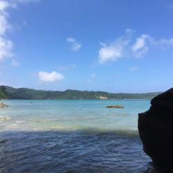 夏休み西表島へ行って来ました。